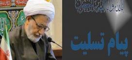 رئیس دیوان عالی کشور خواهان رسیدگی سریع و دقیق به زلزله زدگان استان کرمانشاه شد